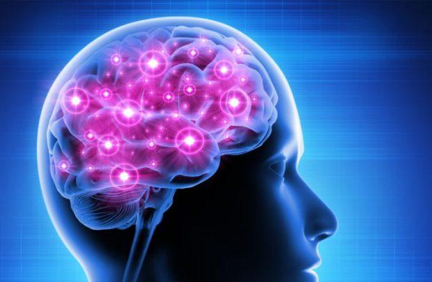 brain-activity-702x459